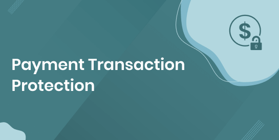 Payment Transaction Protection